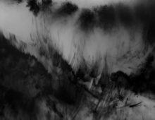 Nébuleuses | 2011